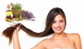 масла   против  сечения волос