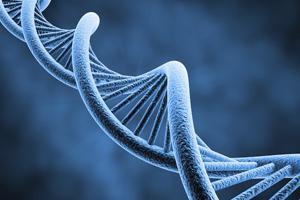 Генетический фактор - причина выпадения волос
