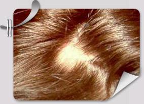 Натуральный шампунь с маслами для волос