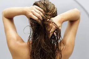 волосы жирнятся