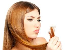 Средство от секущихся кончиков волос в домашних условиях