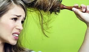 жесткие  волосы