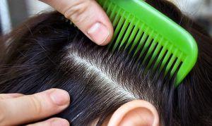 волосы расческа
