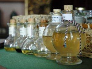 Эффективность шампуней на основе растительных экстрактов