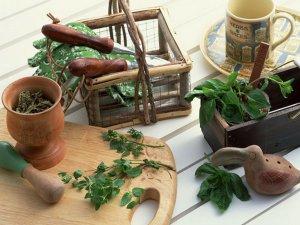 Экстракты лекарственных трав в составе укрепляющих шампуней