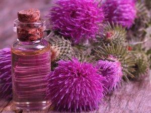 Эффективность репейного масла в лечении волос